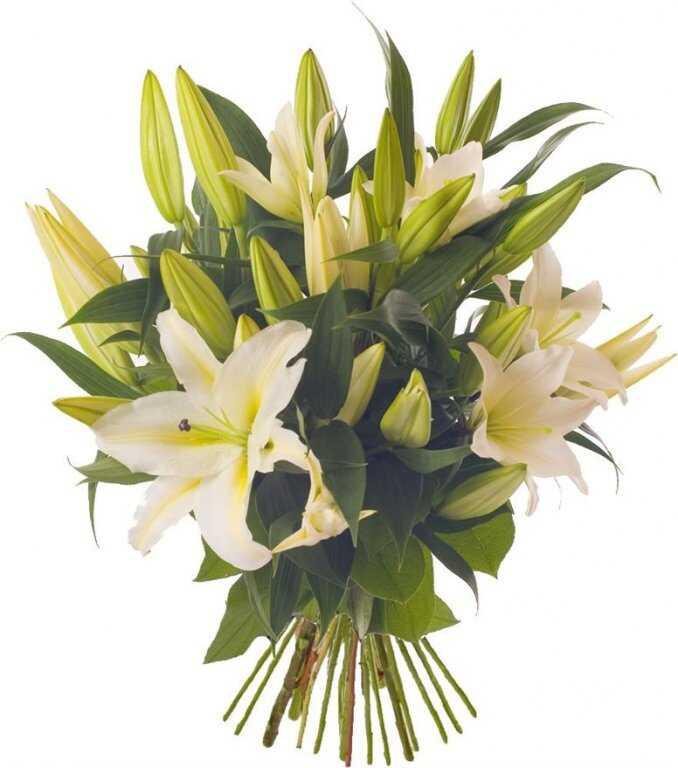Букет «Первоклассные лилии»