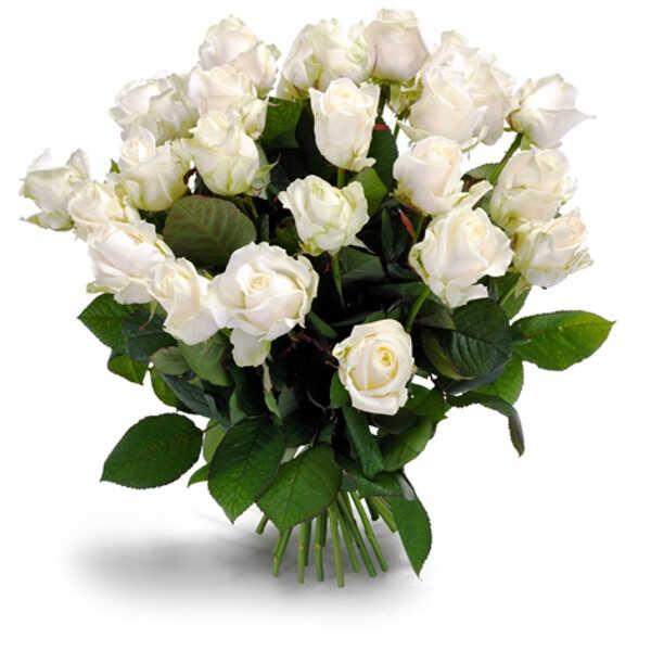 Букет «Первоклассные белые розы»