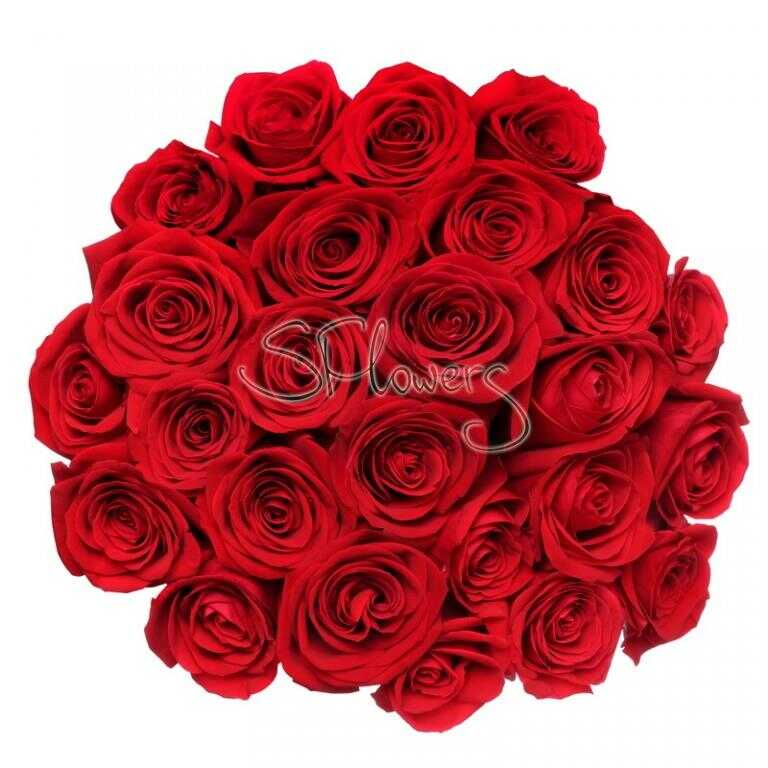 Букет «Первоклассные алые розы»