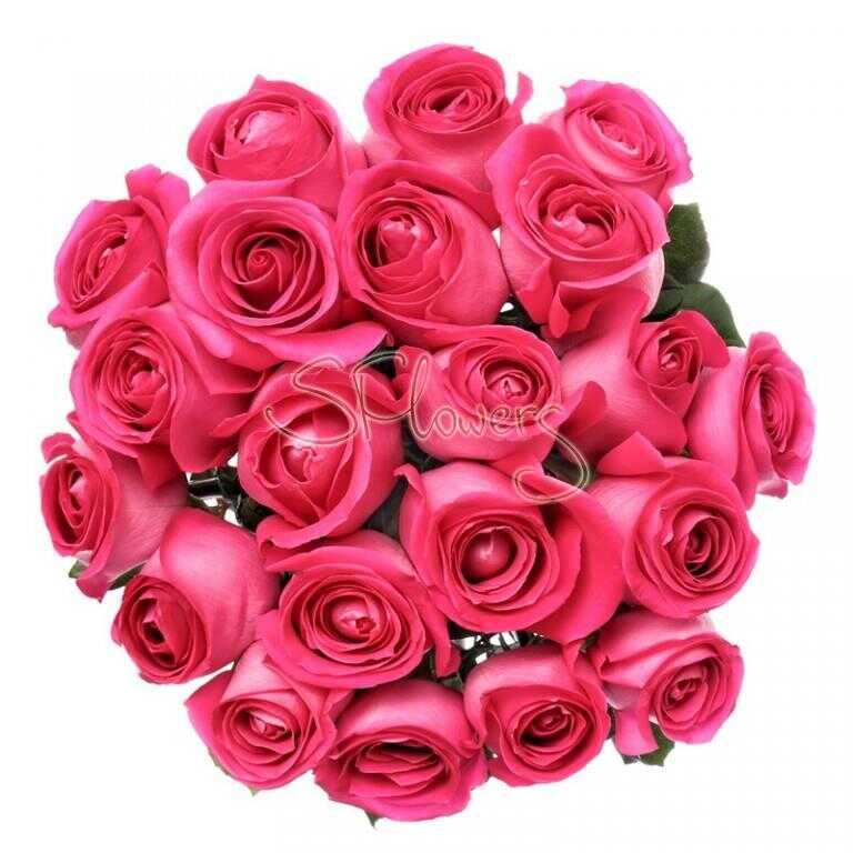 Букет «Свежие малиновые розы»