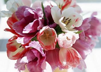 «С весной, милая!»