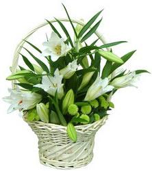 «Прекрасное рядом» Закажите лилии, эти прекрасные цветы, воспетые древними галлами и так любимые французскими королями.  Любителям этого нежного и душистого цветка в...
