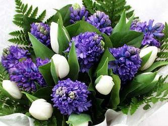 «Голубые росы» Замечательный душистый букет дает намек на весну. Состоит из синих гиацинтов и свежих тюльпанов . Доставка в Верх-Тулу.