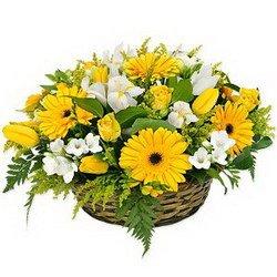 «Вальс цветов» Закажите яркую цветочную композицию из весенних цветов.  Ярко-желтые  герберы, лимонно желтые фрезии и тюльпаны, белоснежные веселые ириски и...