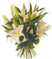 «Первоклассные лилии» Лилия символизировала материальную роскошь, богатство, успех. Лилия с ее нежной красотой и тонким ароматом будет прекрасным подарком практически к... Доставка в Кыстатыам.
