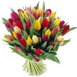 «Самоцветы» Ароматные цветные тюльпаны создадут весеннее настроение. Цвет выбираете вы. Доставка в Лясково.