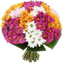 «Для тебя закаты и рассветы» Яркий букет из свежих кустовых хризантем разных сортов с зеленью. Доставка в Торбеево.