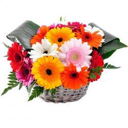 «Подари улыбку» Цветочная корзина  из ярких, красочных гербер подарит массу теплых и приятных эмоций. Отличный подарок близким и родным, коллеге и любимой без...