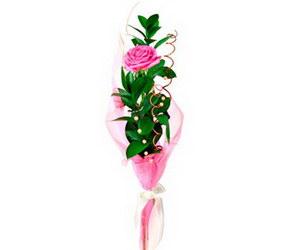 «Для тебя»  Букет из одной розы, оформленной необычным образом будет прекрасным выражением чувств. Роза может быть разного цвета. Укажите цвет розы в... Доставка в Кыстатыам.