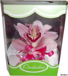 «Подарочная коробочка орхидеи»