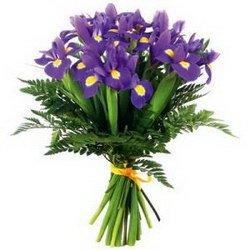 «Первоклассные ирисы» Первоклассные ирисы подают нам хороший пример: где бы они не находились, у них всегда светит солнышко из сердцевины цветка. И глядя на лучезарные... Доставка в Ветерю.
