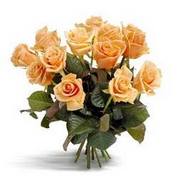 «Первоклассные персиковые розы» Букет сортовых роз средней длины. Доставка в Страхины.