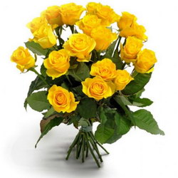 «Первоклассные желтые розы» Букет сортовых роз средней длины. Доставка в Страхины.