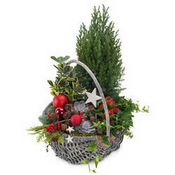 Корзина «Зимний сад»