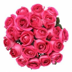«Свежие малиновые розы» Каждая мечтает о таком роскошном букете! Доставка в Линино.
